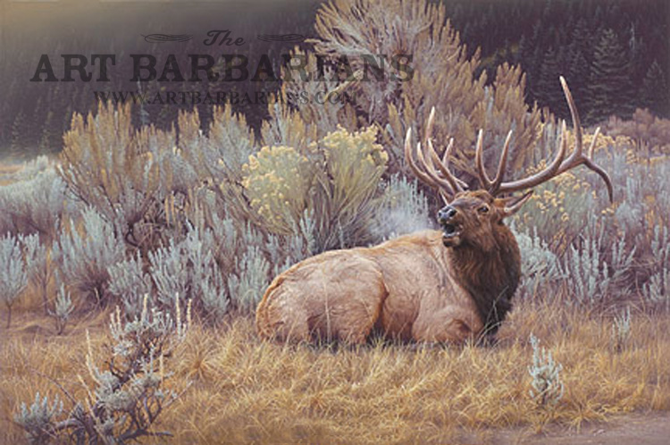 Wildlife art prints plus original paintings with a wide selection from