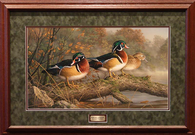 Wildlife art prints plus original paintings with a wide selection ...