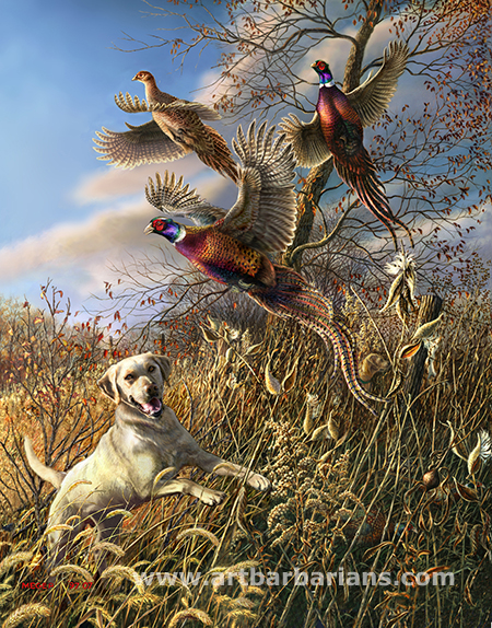 Hunting Labs Lab Pheasant Hunting by