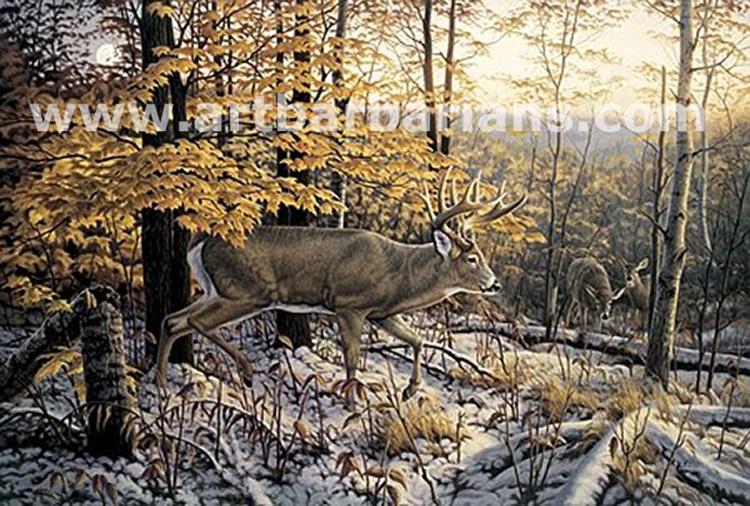 Wildlife art prints plus original paintings with a wide ...