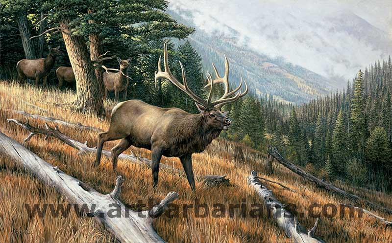 pro hunting essays