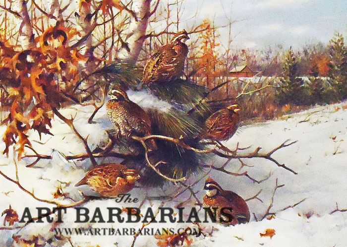 1983 international quail research stamp and print by owen for Art print for sale