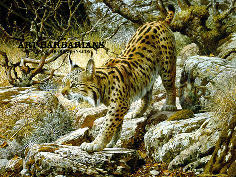 Wildlife art prints plus original paintings with a wide for Large prints for sale